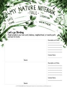 Lets Go Birding Nature Notebook Green